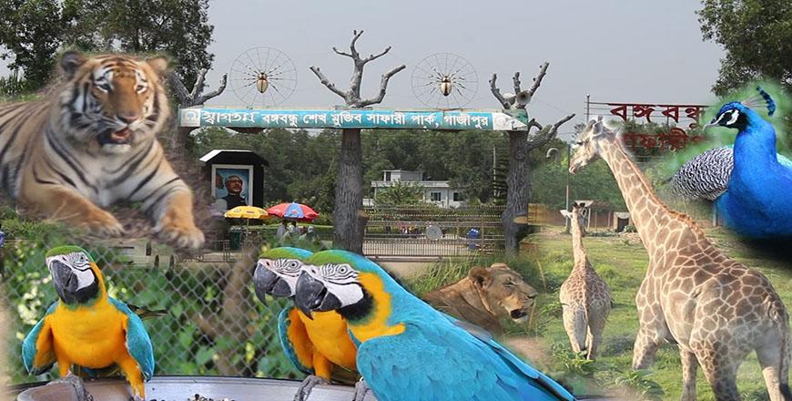 Bangabandhu Safari Park in Gazipur Bangladesh