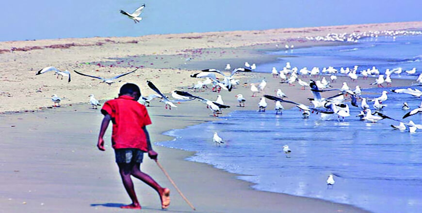 Sonadia Island is a tourist haven for travelers at Moheshkhali Cox's Bazar